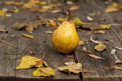 Fresh pears Stock Image
