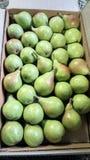 Fresh pears  boxes packings shimla stock photo