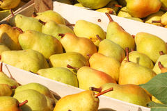 Fresh pears in crates Stock Photos
