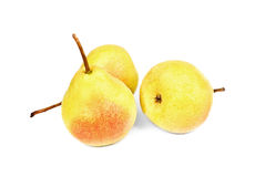 A   fresh pears Stock Photography