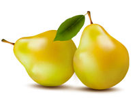 Fresh pears isolated on white. Royalty Free Stock Photos