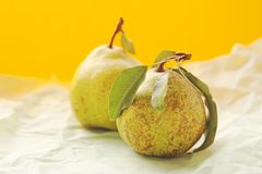 Two pears with leaves Stock Images