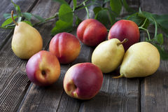 Fresh  pears and nectarines on old table Royalty Free Stock Photo