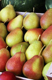 Fresh pears with red and yellow skin Royalty Free Stock Image