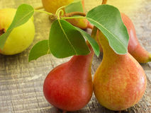 Fresh pears Stock Images