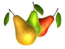 Fresh pears in various colors. Foods and Dishes Series. Stock Photography