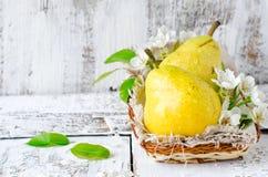 Fresh pears Stock Photos