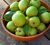 Fresh pears in a wooden bowl Royalty Free Stock Photos