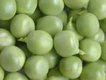 Fresh Peas. Macro royalty free stock photo