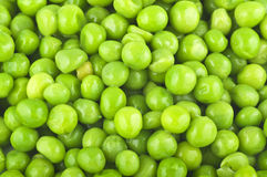 Fresh Peas Royalty Free Stock Image