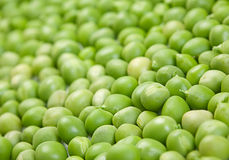 Fresh peas background Stock Images