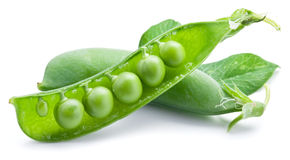 Fresh peas are contained within a pod. Stock Photos