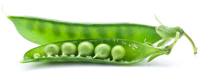 Fresh peas are contained within a pod. Royalty Free Stock Photo