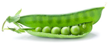Fresh peas are contained within a pod. Stock Image