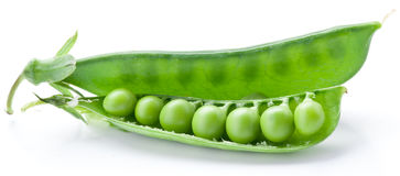 Fresh peas are contained within a pod. Stock Images