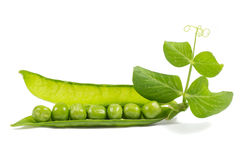 Fresh peas with green leaf isolated on white Royalty Free Stock Image