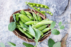 Fresh peas on a stone, top view Royalty Free Stock Image