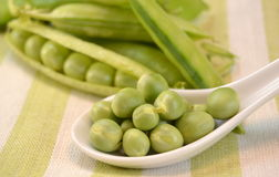 Fresh peas in their pods Stock Photography