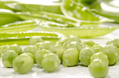 Fresh peas which were cleaned Royalty Free Stock Image