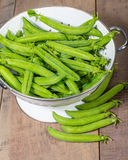 Fresh peas in a white colander Stock Photography