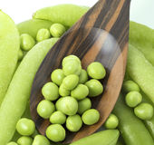 Fresh peas on wooden spoon. With pods background Royalty Free Stock Images