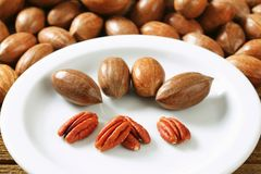 Fresh pecans Royalty Free Stock Image