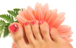 Fresh pedicure Royalty Free Stock Photography