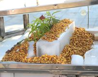 Fresh Peeled Almonds on ice to get cold royalty free stock photography