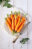 Fresh peeled carrots on green tops Stock Image