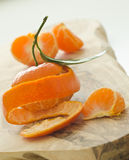 Fresh peeled clementines Stock Photography