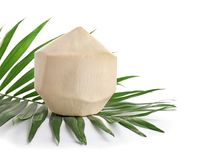 Fresh peeled coconut and palm leaf. On white background Stock Photography