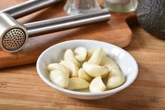 Fresh peeled garlic. Fresh organic peeled cloves of garlic in a bowl next to a garlic press Stock Photography
