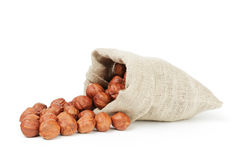 Fresh peeled hazelnuts in sack bag isolated Royalty Free Stock Image