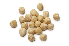 Fresh peeled Macadamia nuts Royalty Free Stock Photos