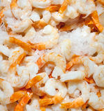 Fresh peeled shrimp. On ice for sale at market Royalty Free Stock Photos