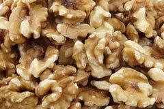 Fresh peeled walnuts background Stock Image