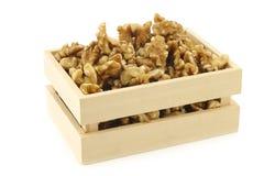 Fresh peeled walnuts Stock Images