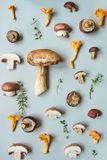 Fresh penny bun mushroom with mixed mushrooms on the blue background, top view Royalty Free Stock Photo