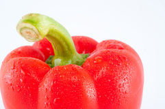 Fresh pepper Royalty Free Stock Photography