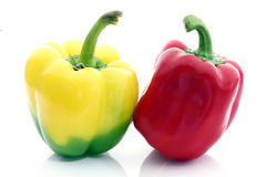 The fresh pepper Stock Images