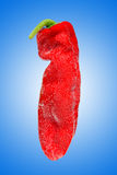 Fresh pepper Stock Photo