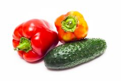 Pepper and cucumber Royalty Free Stock Images