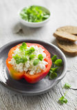 Fresh pepper stuffed with cheese Royalty Free Stock Images