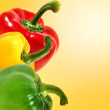 Fresh pepper vegetables on yellow background Royalty Free Stock Photos