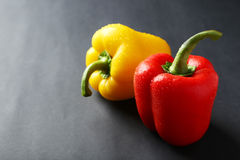 Fresh pepper with water drops on the grey background Royalty Free Stock Photography