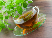 Fresh peppermint tea Royalty Free Stock Photos