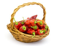 Fresh peppers in a basket Royalty Free Stock Photos