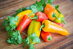 Fresh Peppers Cilantro Food Royalty Free Stock Images
