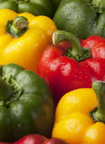 Fresh peppers with dew drop close up Stock Photography
