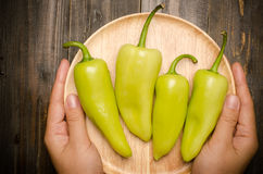 Fresh peppers Stock Image